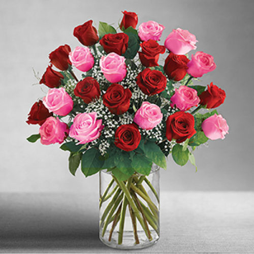 2 dozen pink and red roses
