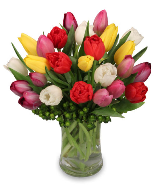 Tip Top Tulips